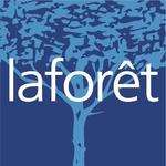 Lorient Laforet Merville