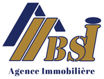 BSI Immobilier