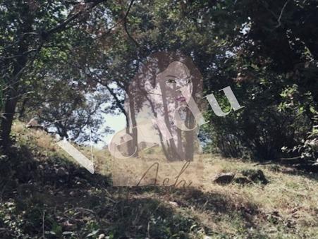 vente terrain Villevaude