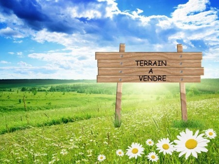 vente terrain Quarante