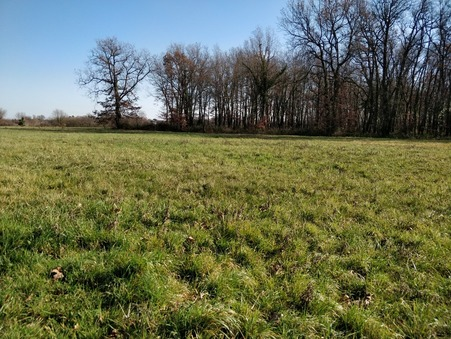 vente terrain Villaries