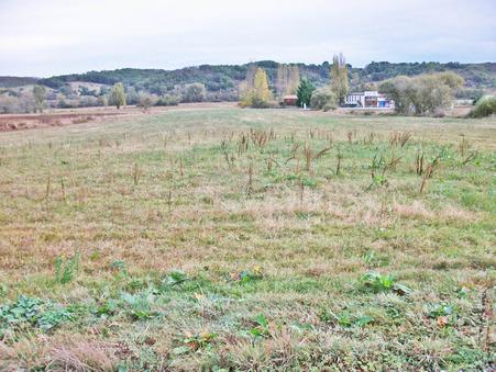 vente terrain Artigat