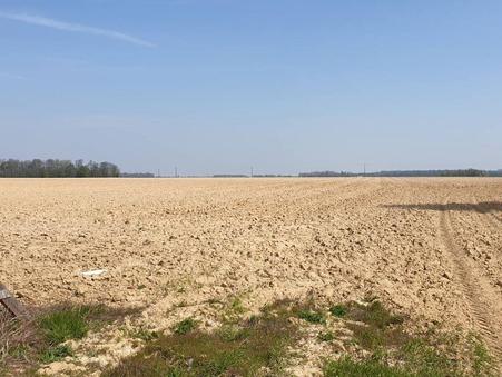 vente terrain Courpalay