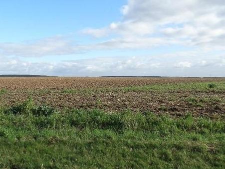 vente terrain Landes le gaulois