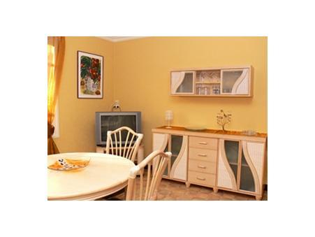location appartement Amélie les bains