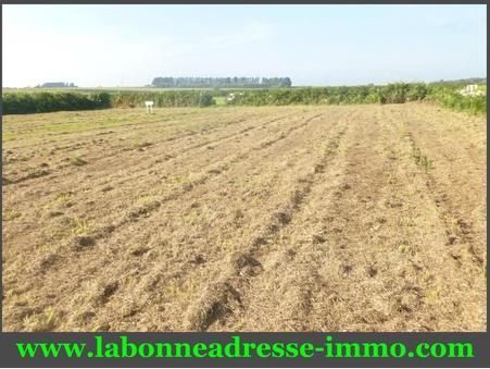 vente terrain Plouhinec