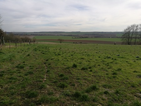 vente terrain Chouy