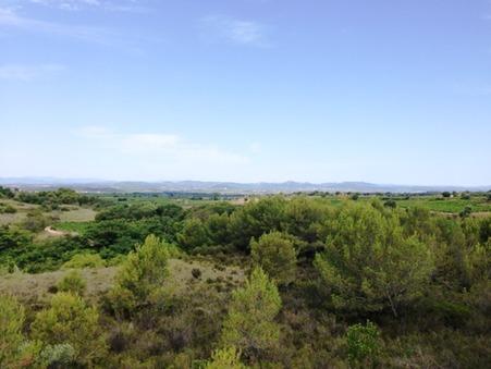 vente terrain Montagnac