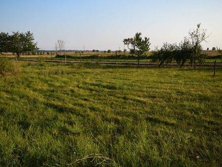 vente terrain Kintzheim