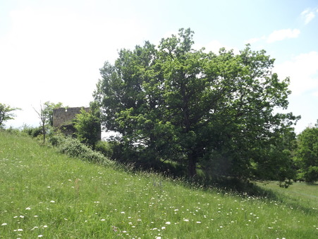 vente terrain Biron