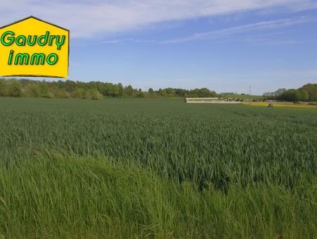 vente terrain Selongey