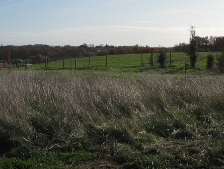 vente terrain Cornebarrieu