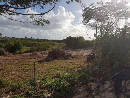 vente terrain Anse bertrand