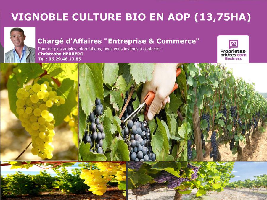 Vente Autre Narbonne  585 000 €
