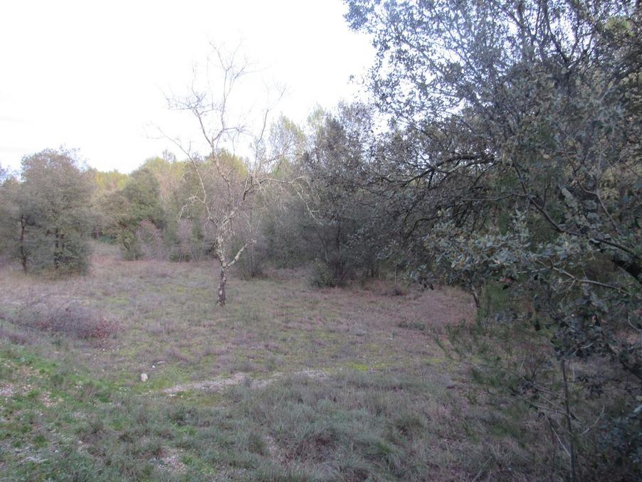 Vente Terrain SAINT JEAN DE CORNIES 2