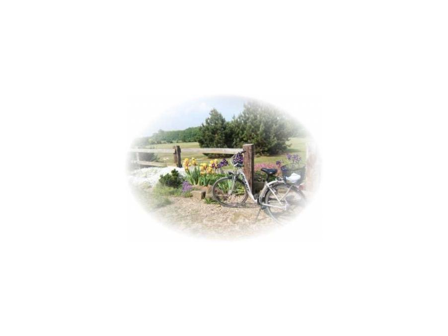 Location saisonniere Maison Sundhouse 4