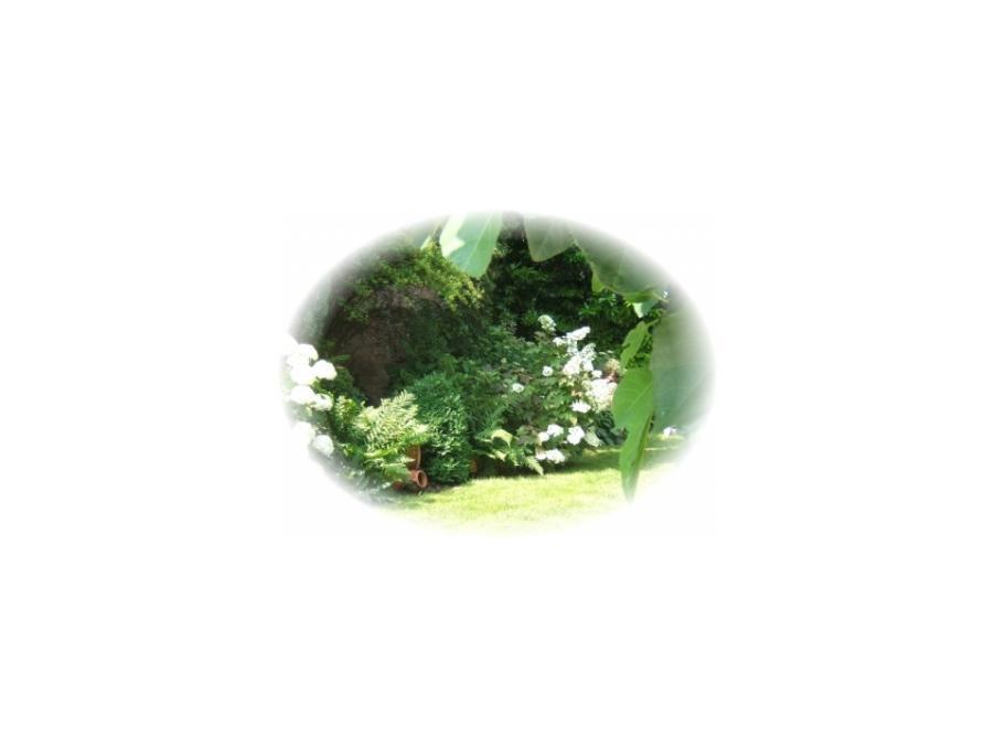 Location saisonniere Maison Sundhouse 5