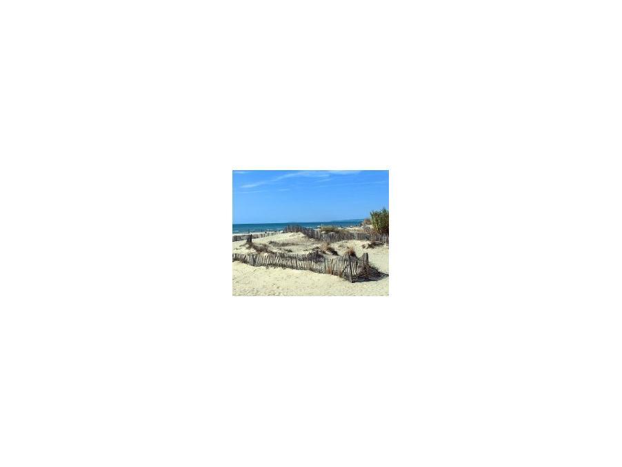 Location saisonniere Maison  séjour 12 m²  11430 gruissan  320 €