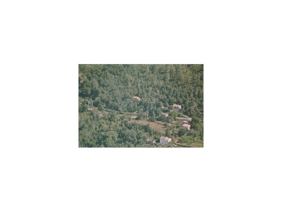 Location Maison Gavignano  300 €