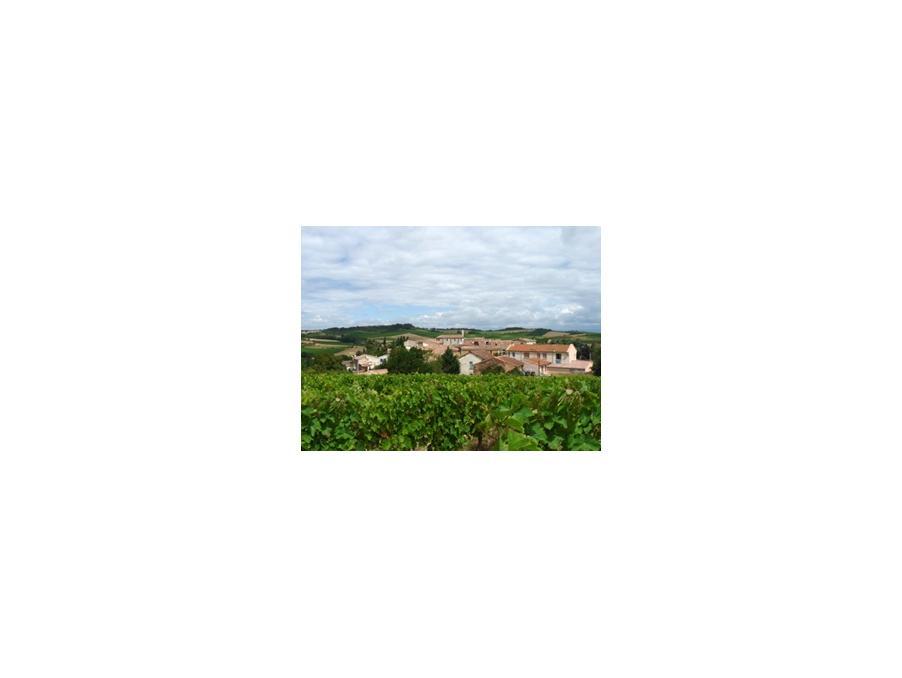 Location saisonniere Maison Donazac 2