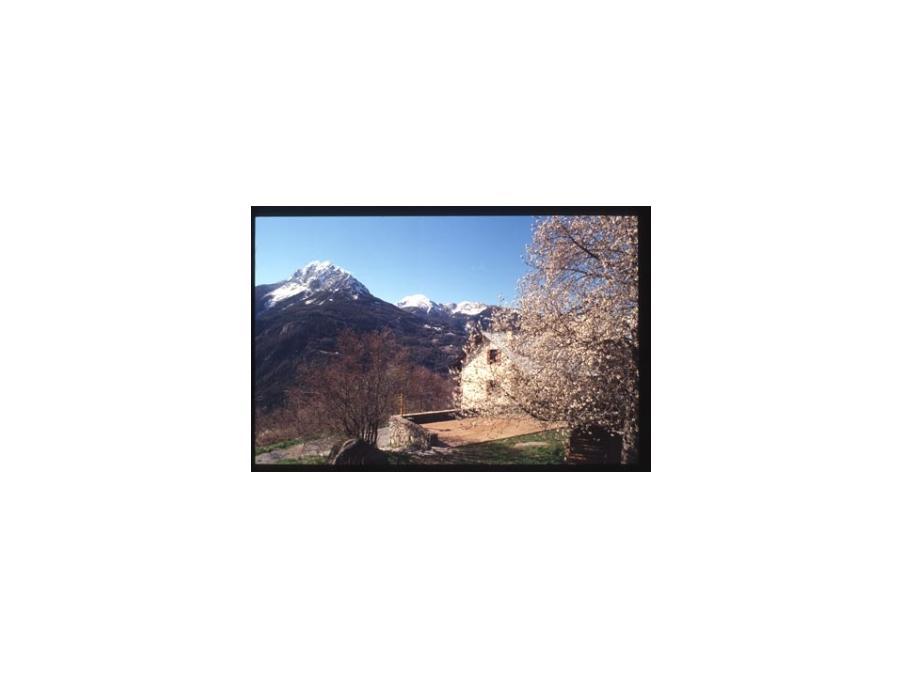 Location Gite Méolans revel 1 525 €