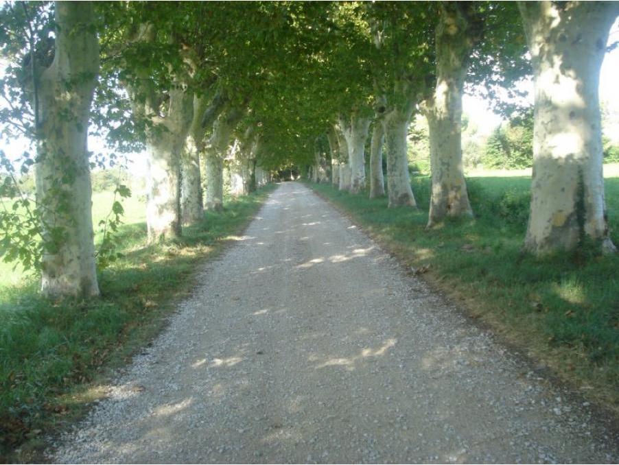 Vente Maison Proche centre d'Arles  780 000 €