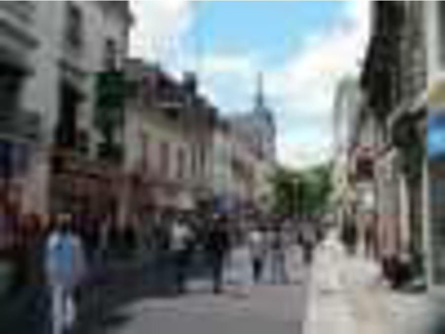 Location Professionnel TOURS  100 000 €