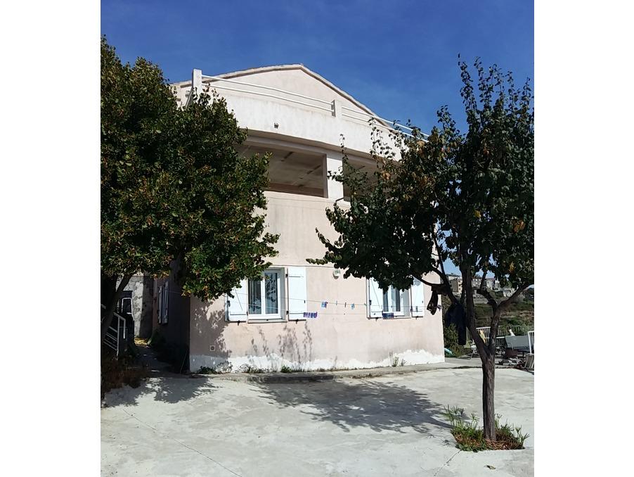 Vente Maison  1 salle de bain  SANT ANDREA DI COTONE  300 000 €