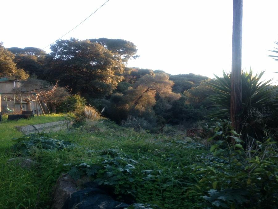 Vente Maison Cap d'Antibes 2