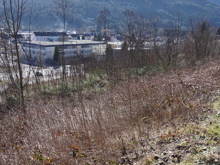 Vente Terrain SAULXURES SUR MOSELOTTE 20 762 €
