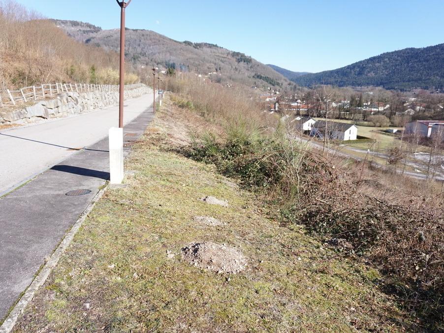 Vente Terrain SAULXURES SUR MOSELOTTE 21 547 €
