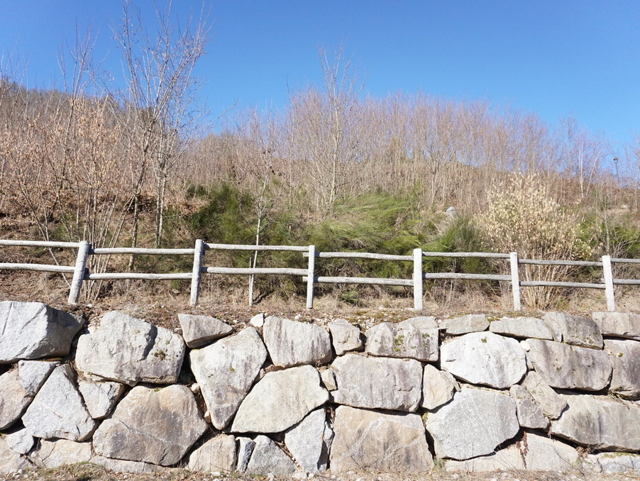 Vente Terrain SAULXURES SUR MOSELOTTE 33 589 €
