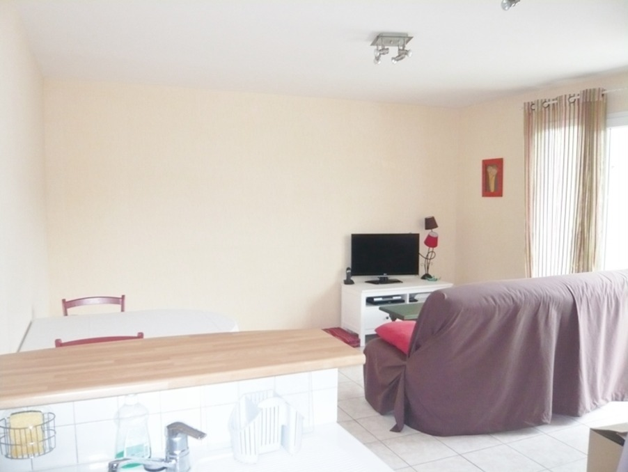 Location Appartement BRIVE LA GAILLARDE  465 €